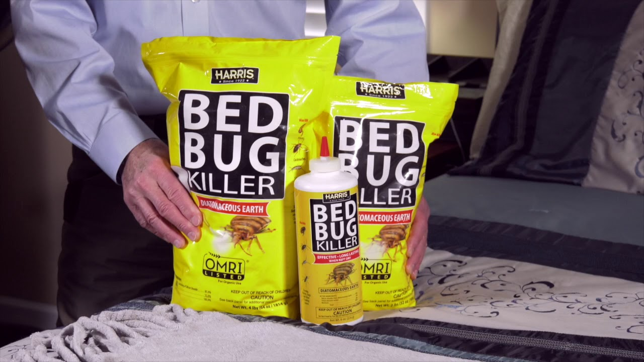 Why You Might Need Bed Bug Killer
